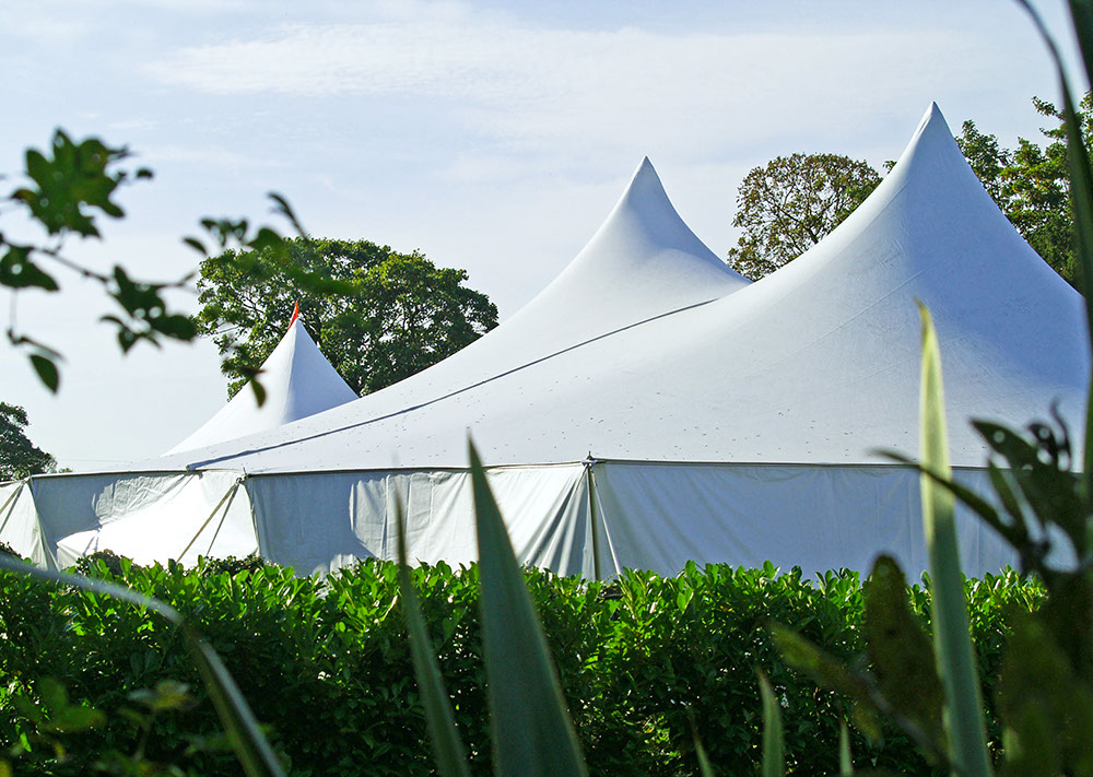 Poleadion 60X60 | Wedding Tent